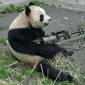 A Secret Weapon for Combatting the Google Panda Update