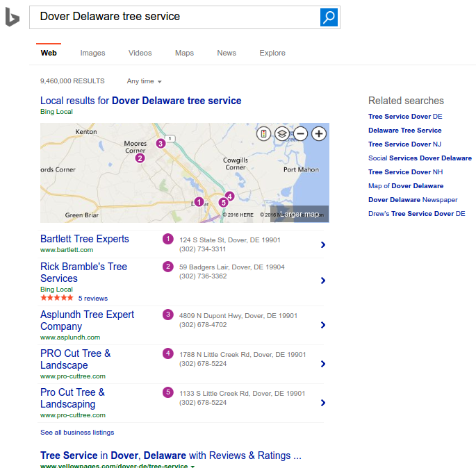 Bing Search for Local Tree Service